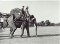 HRH Prince El Hassan riding an elephant